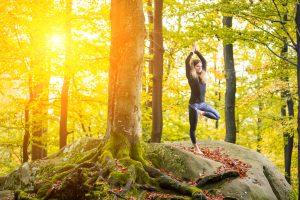 flow into autumn, yoga, essential oils, retreat, sound healing, seed wellness, harmonise you,