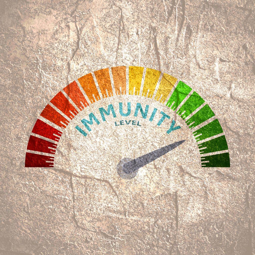 immunity, covid 19, covid, boost your immunity, seed wellness, seed marlow, seed beaconsfield, wellness, health,
