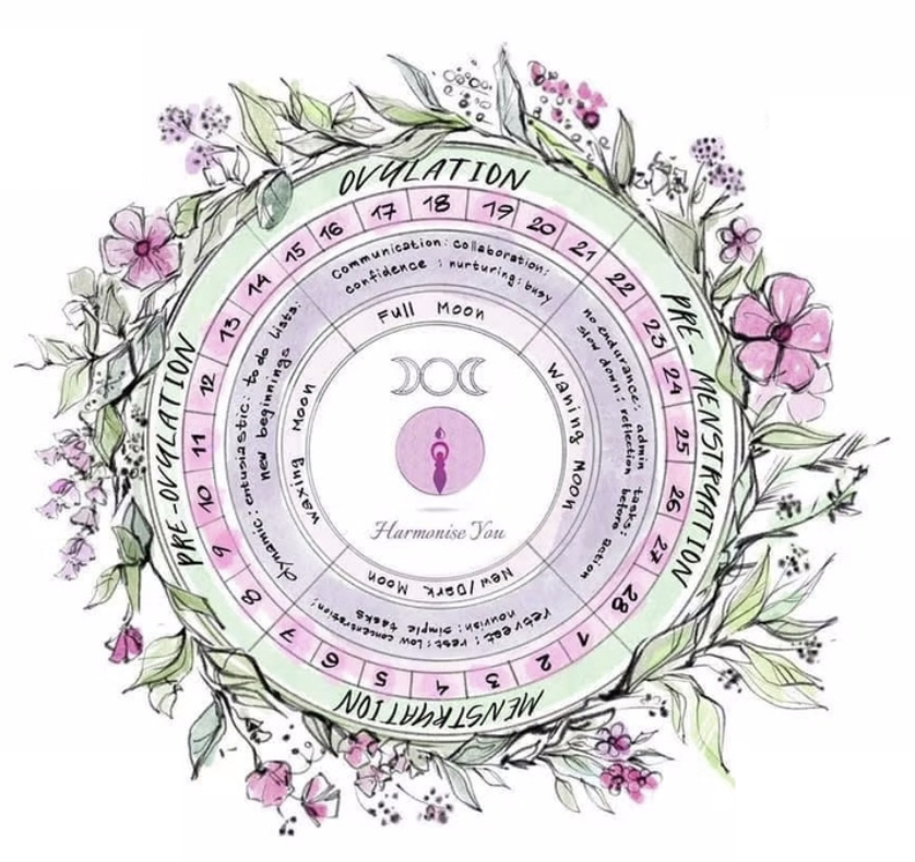 women's health, cyclical living, cyclical living mentoring, women, hormones, seed beaconsfield, harmonise you, adele wimsett,