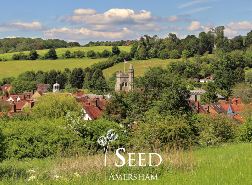 seed amersham, wellness amersham, seed wellness, health amersham, amersham,