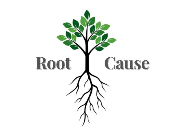 functional medicine, bespoke doctor, dr ashvy bhardwaj, root cauyse, lifestyle medicine, seed wellness,